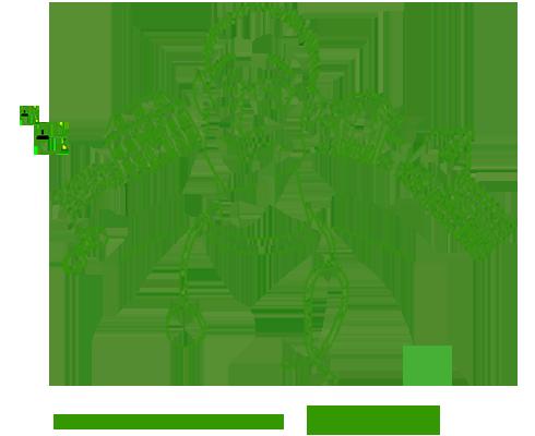 DOCTOR / YOSHIKAZU SUDO 須藤 良和